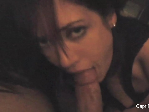Babe Capri Cavanni sucking cock